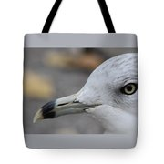 Gull Eye Tote Bag