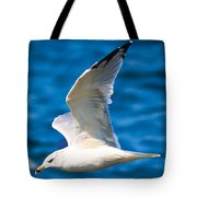 Gull Flying Tote Bag