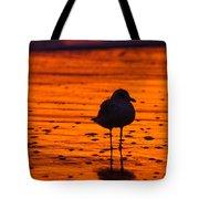 Gull Caught At Sunrise Tote Bag