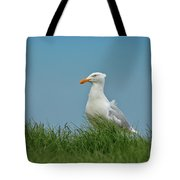 Gull Lookout Tote Bag