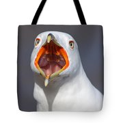 Gull Portrait Tote Bag by Mircea Costina Photography