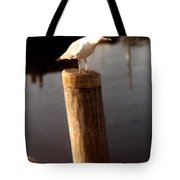 Gull Warning Tote Bag