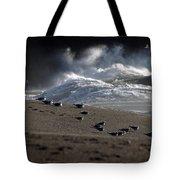Gulls At Goat Rock Sundown Tote Bag