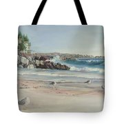 Gulls At Rest Tote Bag
