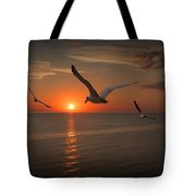 Gulls Flying Towards The Sun Tote Bag
