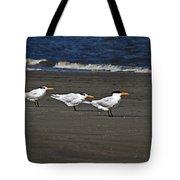 Gulls On Beach Tote Bag