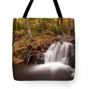 Gully Lake Cascades #1 Tote Bag