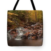 Gully Lake Trail Cascades #2 Tote Bag