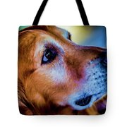 Gus As Photo Assistant 3504t2 Tote Bag