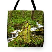 Gushing Through Ferns And Forest Tote Bag