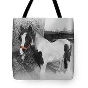 Gypsy Horse Tote Bag