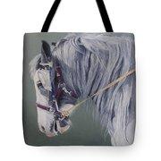 Gypsy Cob Mare-milltown Fair Tote Bag