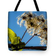 Hairy Beauty Tote Bag