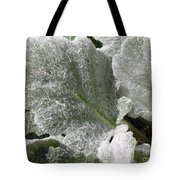 Hairy Leaf Tote Bag
