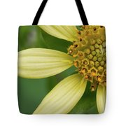 Hairy Leafcup #2 Tote Bag