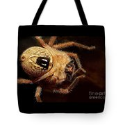 Hairy Spider Tote Bag