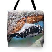 Hairy Woodpecker 2 Tote Bag