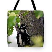 Downy Woodpecker 01 Tote Bag