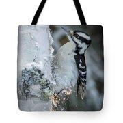 Hairy Woodpecker Female Tote Bag