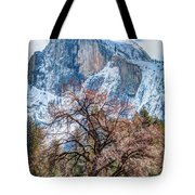 Half Dome Meadow Tree Winter Tote Bag