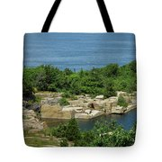 Halibut Point, 5451 Tote Bag
