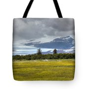 Hallo Glacier And A Bear Tote Bag