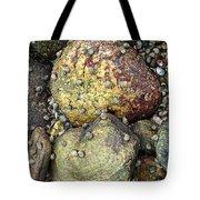Hammonasset Rocks Tote Bag