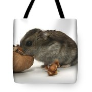 Hamster Eating A Walnut  Tote Bag