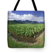Hanalei Valley, Taro Fiel Tote Bag