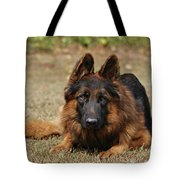 Handsome Fella Tote Bag