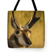 Handsome Is Tote Bag