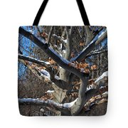 Handsome Romantic Tote Bag