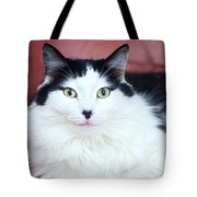Handsome Tuxy Tote Bag