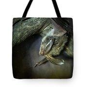 Hanging Big Eared Bat Tote Bag