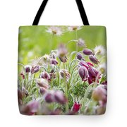 Hanging Blooms Tote Bag