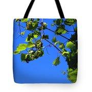 Hanging Grapes Tote Bag