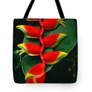 Hanging Heliconia Tote Bag