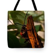 Hanging On For Life Tote Bag
