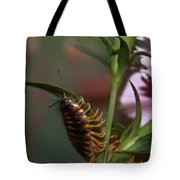 Hanging On Hanging In There Tote Bag