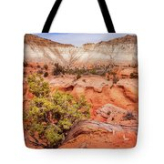 Hanging On The Cliff At Kodachrome Basin State Park Tote Bag