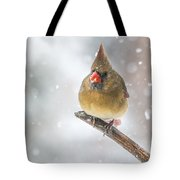 Hanging Out In The Snow Tote Bag