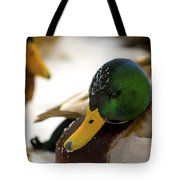Hanging Out On The Ice Tote Bag