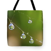 Hanging Plants Tote Bag