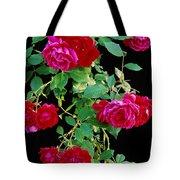 Hanging Roses 2593 Tote Bag