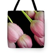 Hanging Tulips Tote Bag by Tracy Hall