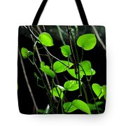 Hanging Vines Tote Bag