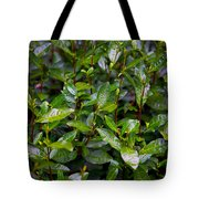 Hangzhou Tea Tote Bag