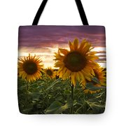 Happiness Is A Field Of Sunflowers Tote Bag