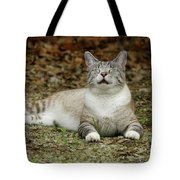 Happy Cat Tote Bag