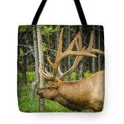Happy Elk Tote Bag